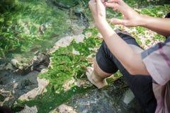 Springbrunnen, naturliga brunnar i Pak Chong är en turist- dragning Royaltyfri Bild