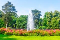 Springbrunnen på offentligt parkerar i Wejherowo, Polen arkivfoton