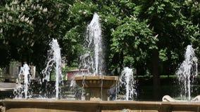 Springbrunnen parkerar in den Pecs Ungern arkivfilmer