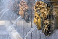 Springbrunnhuvud i Peterhof, Sankt Peteresburg vattenkastare royaltyfria foton