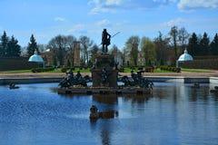 SpringbrunnNeptun i Peterhof, St Petersburg, Ryssland Royaltyfria Bilder