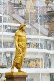 springbrunnpetergofpetersburg russia saint Fotografering för Bildbyråer