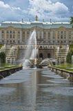 SpringbrunnPeterhof slott Royaltyfri Bild