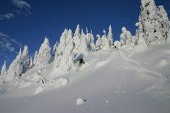 Springen in den Schnee Stockfotos