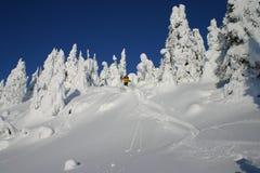 Springen in den Schnee 2 Stockbild