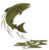 Springen der atlantischen Lachse lizenzfreie abbildung
