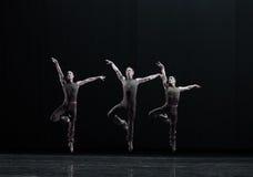 Springen Sie in das luft-klassische Ballett ` Austen-Sammlung ` Lizenzfreie Stockfotos
