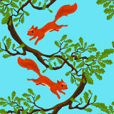 Springende Eichhörnchen Stockbild