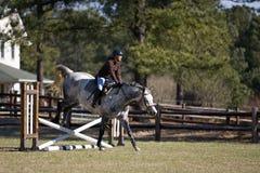 Springende Hürden des Mitfahrers und des Pferds lizenzfreies stockbild