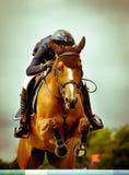 Springende Konkurrenz Lizenzfreies Stockfoto