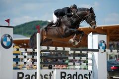 Springende Konkurrenz des Pferds in Pezinok, Slowakei Stockbilder