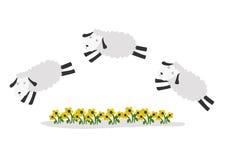 Springende Schafe mit Farbhintergrund Stockfotos