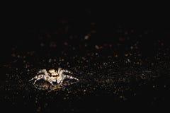 Springende Spinne auf dem Scheinwerfer Stockbild