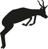Springende springbok Stock Afbeelding