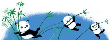 Springender Panda auf Bambus Lizenzfreies Stockbild