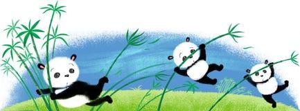 Springender Panda auf Bambus Stockbild