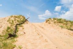 Springender-weg Platz der Sammlung in den Sanden Lizenzfreie Stockfotos