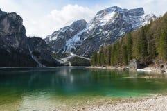 Springer landscape of Braies lake, Trentino, Italy Royalty Free Stock Image
