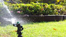 Springer water system used for watering plant in the garden, full hd 1080p slow motion. Springer water system used for watering plant and flower in the garden stock video