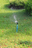 Springer is working and have water spread for green lawn. Stock Photos