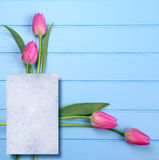 Springflowers on blue wood background. And paper copy space stock image