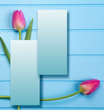 Springflowers on blue wood background. And paper copy space stock photos