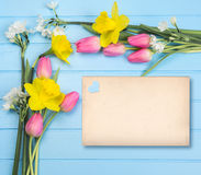 Springflowers on blue wood background. And paper copy space stock images