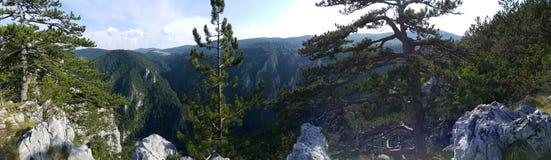 Springin bergen Arkivbilder
