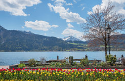 Springlike flowerbed at spa town tegernsee, lake shore with benc Royalty Free Stock Photography