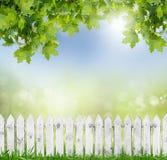 Springold vitt staket royaltyfri bild