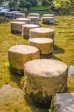 Springplanken in Japan Royalty-vrije Stock Fotografie