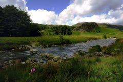 Springplanken over de rivier Stock Afbeeldingen