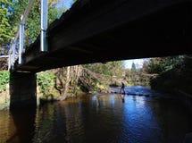 Springplanken over rivier Stock Afbeeldingen