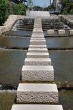 Springplanken in Rivier horu-Kawa Royalty-vrije Stock Afbeeldingen