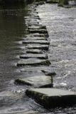 Springplanken in Water Stock Foto's