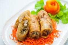Springroll. Large variety of filled, rolled appetizers or Dim Sum found in East Asian and Southeast Asian cuisine Royalty Free Stock Images