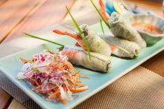 Springroll with vegetables and prawn served with salad and sauce. Asian cuisine. Springroll with vegetables and prawn served with salad and sauce. Vietnam asian Royalty Free Stock Images