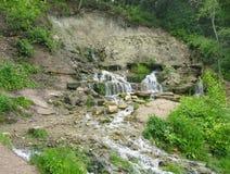 Springs. Natural water springs in summer Royalty Free Stock Photos
