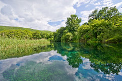 Springs of Black Drin river near Ohrid, Macedonia Royalty Free Stock Photo