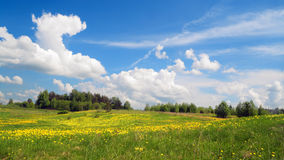 Springs field landscape Royalty Free Stock Photography