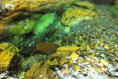 The springs is limpid with crystal water. Royalty Free Stock Photos