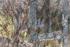 Springs for mattresses. Sprusty mattress springs and abandoned outdoors Royalty Free Stock Photo