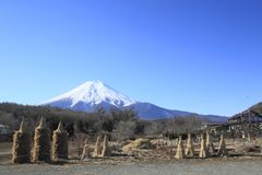 Springs of Mt.Fuji Stock Images