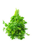 Springs of parsley. On the white Stock Images