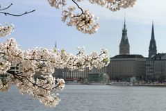 Springtime. Europen City Center with historcal buildings Royalty Free Stock Photography