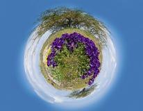 Springtime Stock Image