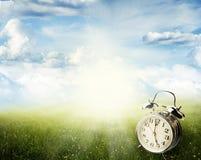 Springtime. Alarm clock in sunlit spring field Stock Images