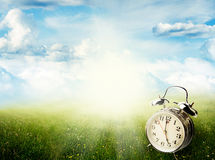 Springtime. Alarm clock in sunlit spring field Stock Photo