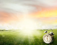 Springtime. Alarm clock in sunlit spring field Stock Photography