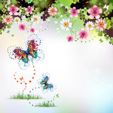 Springtime background. With flowers and butterflies Stock Images